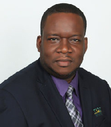 Real Estate Experts in Jamaica Lauds First Online Property Auction - Kevin Knightingale