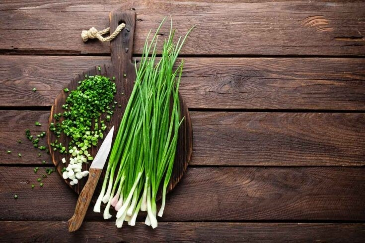 8 Herbs You Can Grow and Eat at Home - Chives