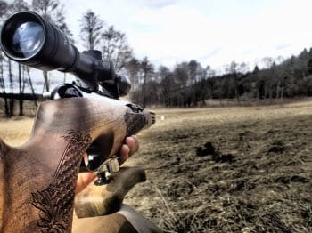 Hunting with Air Rifles